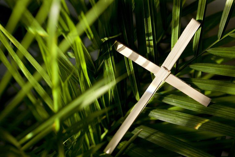 Online service, Palm Sunday